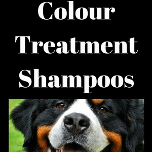 Color Treatment Shampoos