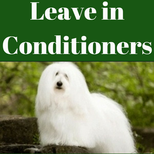 Leave in Conditioners