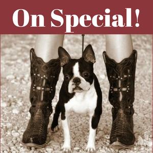 .Specials & Promotions